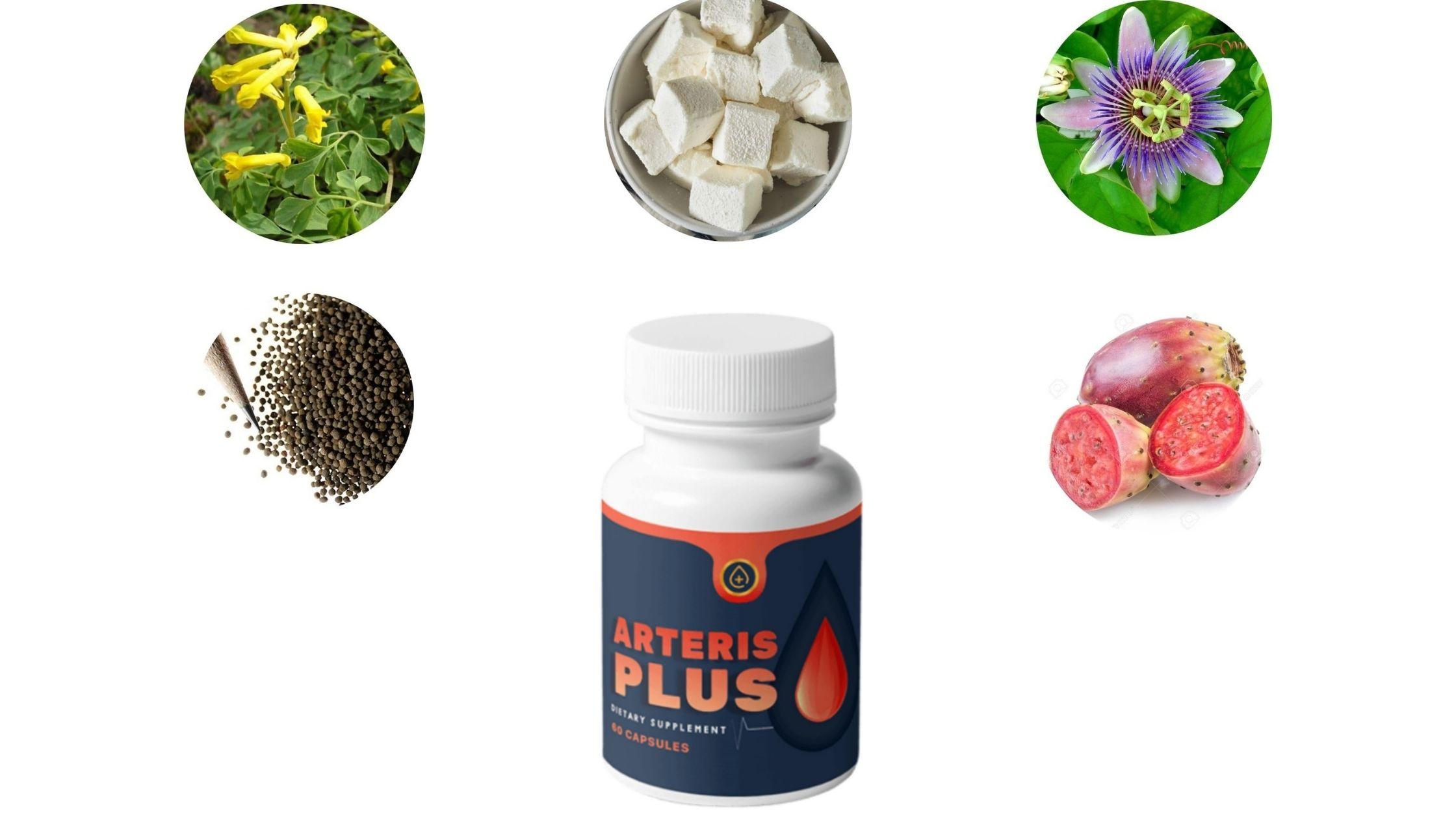 Arteris Plus- Ingredient